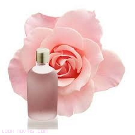 perfumes naturales para regalar