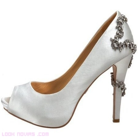 Zapatos elegantes de Badgley Mischka