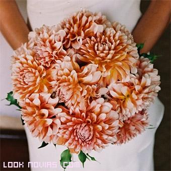 dalias bicolor para novias