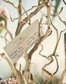 Un árbol de los deseos para tu boda